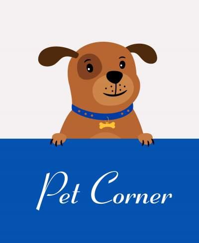 Pet corner in birthday party - Video invitation maker